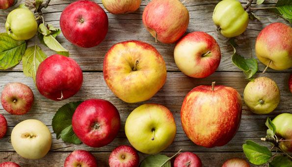 Diverse Apfelsorten ausgelegt auf einem Holztisch