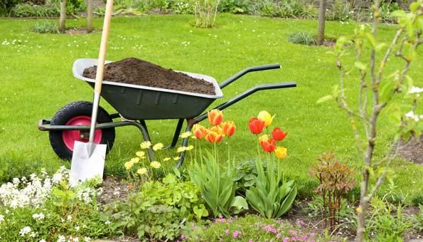 Garten mit Schubkarre, Schaufel, Tulpen und anderen Blumen