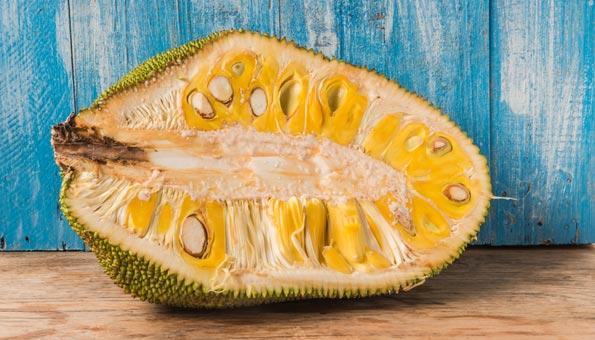 Halbierte Jackfruit auf einem Holztisch vor blauer Wand