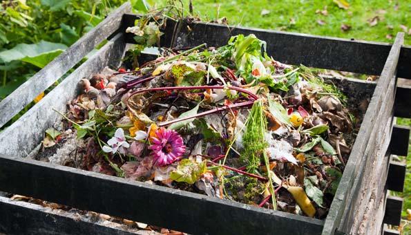 Richtig Kompost anlegen im Komposter