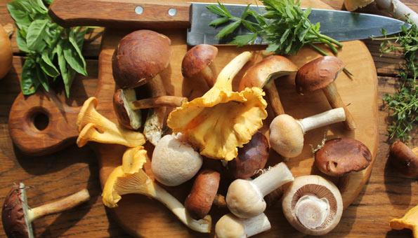 Verschiedene Pilze auf einem Holzbrett plus frische Kräuter