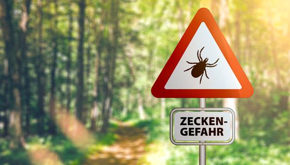 Zeckenwarnung im Wald.