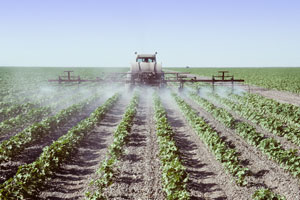 Bio-Jeans: Warum sie so viel besser ist. Baumwollfelder werden mit Pestiziden behandelt.