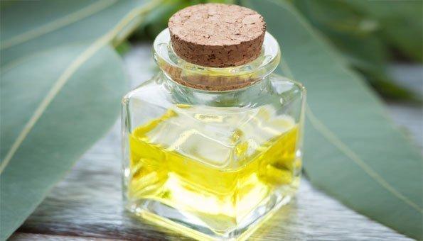 Massageöl mit Eukalyptus entspannt die Muskeln und erfrischt.