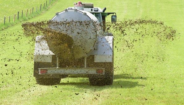 Bauern Gewässerverschmutzung Schweiz wegen Gülle und Pestiziden