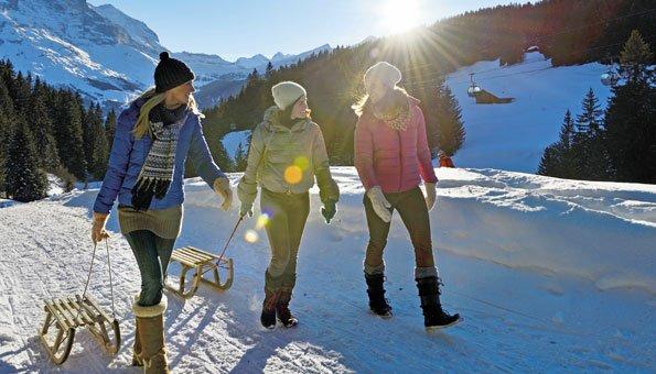 Schlitteln in Grindelwald: Die spannendsten Routen