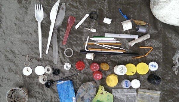 Die Sammler finden alles Mögliche an den Ufern von Schweizer Gewässern