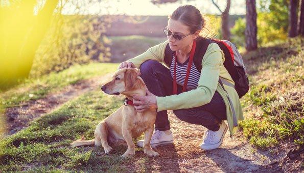 Richtig schützen vor Zecken: Den Körper gut absuchen und Zeckenstiche verhindern