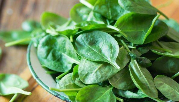 Frisches Grünzeug soll das Gehirn langsamer altern lassen