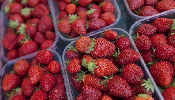 erdbeeren aus der schweiz sind bis zu 20 pestiziden ausgesetzt. Black Bedroom Furniture Sets. Home Design Ideas