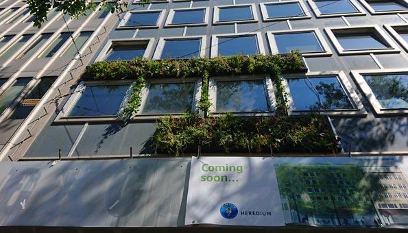 Erste bepflanzte Hausfassade in einer Schweizer Innenstadt