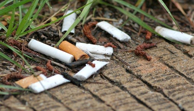 World Cleanup Day 2021: Zigarettenstummel auf Platz 1 beim Littering