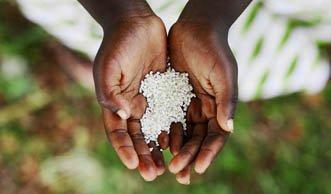 Krisen lassen den Welthunger wieder grösser werden