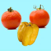 Food Waste vermeiden ist nachhaltig und hilft bei einem nachhaltigeren Leben
