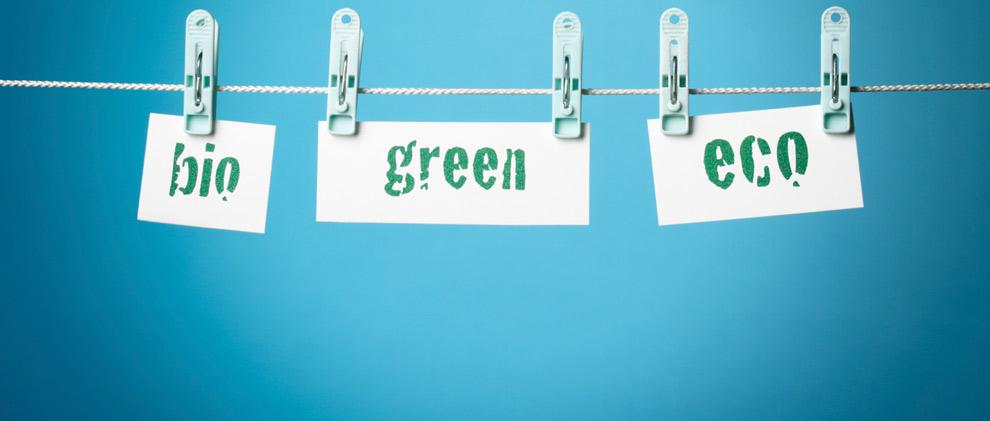 Greenwashing: So erkennen Sie grüne Märchen