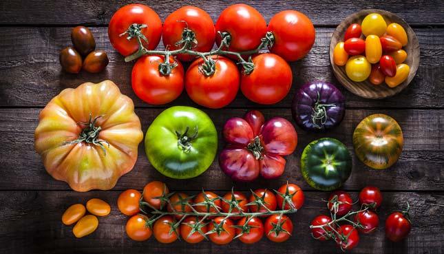 Welche Tomaten zum Einkochen?