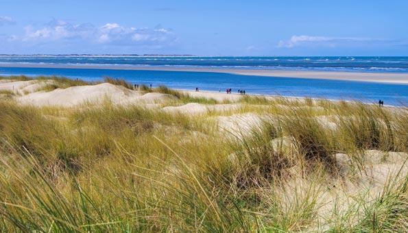 Übers Wattenmeer spazieren und die Gezeiten beobachten.