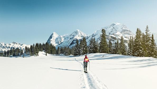 Schneeschuhlaufen Berner Oberland: Schneeschuhwandern, wo es am schönsten ist