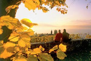 Diese Weinwanderungen solltest du dir nicht entgehen lassen