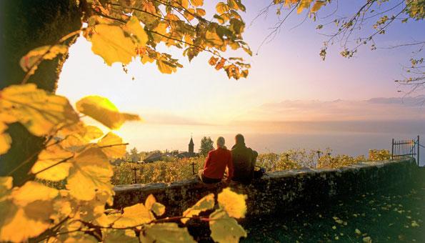 Weinwanderungen in den Weinanbaugebieten der Schweiz entdecken