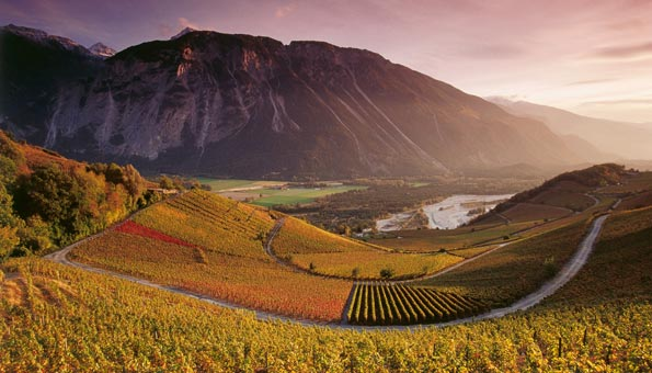 Weinwanderung im Naturpark Pfyn-Finges mit den Rebbergen von Varen im Rhonetal