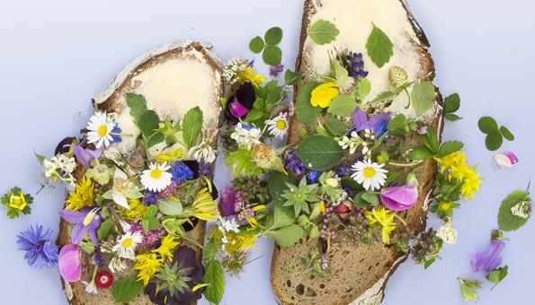 Essbare Blüten und essbare Blumen