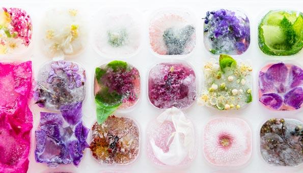 Eiswürfel mit essbaren Blumen