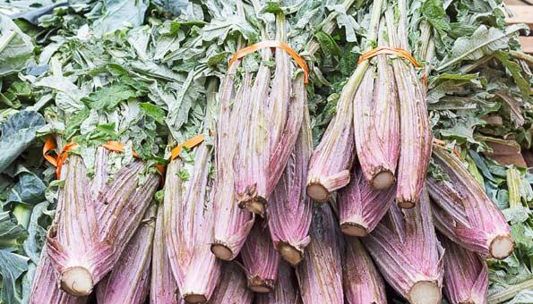 Kardy: Warum das Gemüse so gesund ist, Rezept-Tipps und mehr