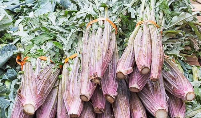 Warum die Gemüse-Artischocke «Kardy» unsere Küche bereichert
