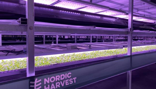 Kopenhagen hat grösste Vertikale Farm Europas