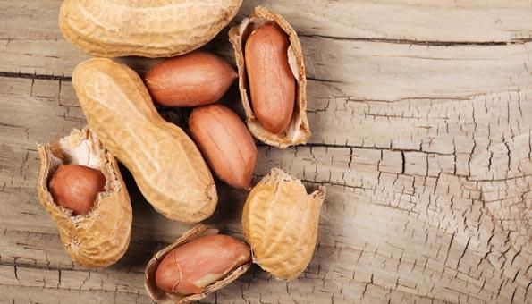 Nusssorte: Erdnüsse