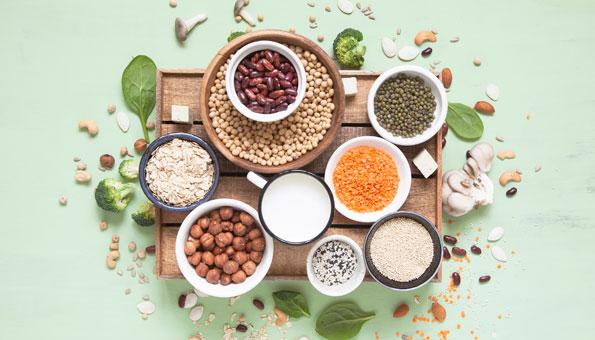 Pflanzliche Proteine