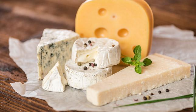 Tierisches Lab: Was die Zutat im Käse bedeutet